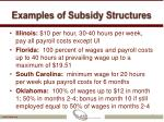 examples of subsidy structures