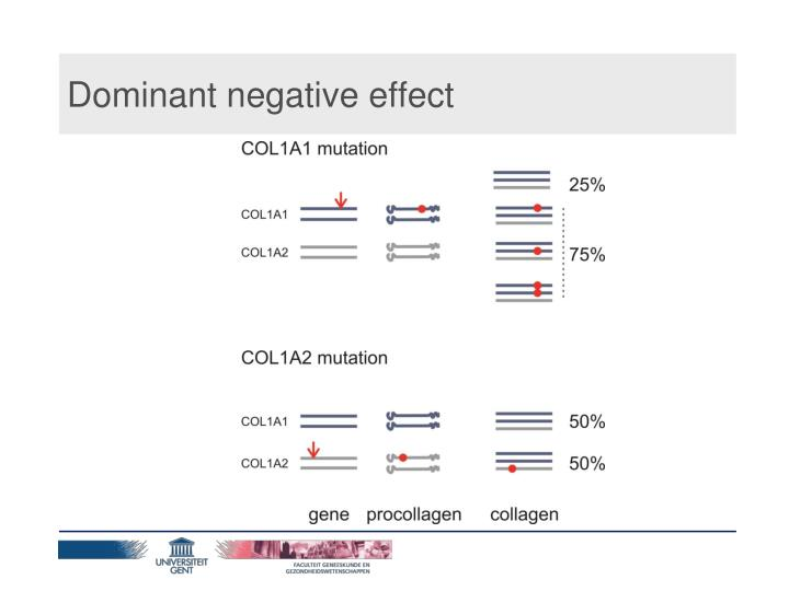 Dominant negative effect