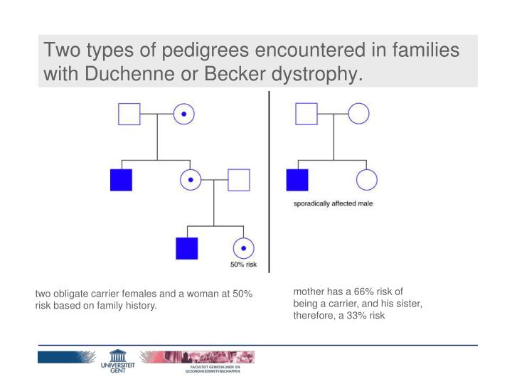 Two types of pedigrees encountered in families with Duchenne or Becker dystrophy.