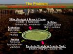 the problem potential gaseous emissions from feedlot surface
