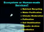 ecosystem or human made services