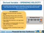 derived variable spending velocity