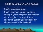 sinifin organ zasyonu2