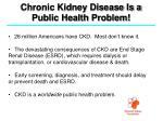 chronic kidney disease is a public health problem