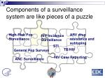 components of a surveillance system are like pieces of a puzzle
