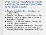 what kinds of procedures do courts and other dispute resolution bodies need these include