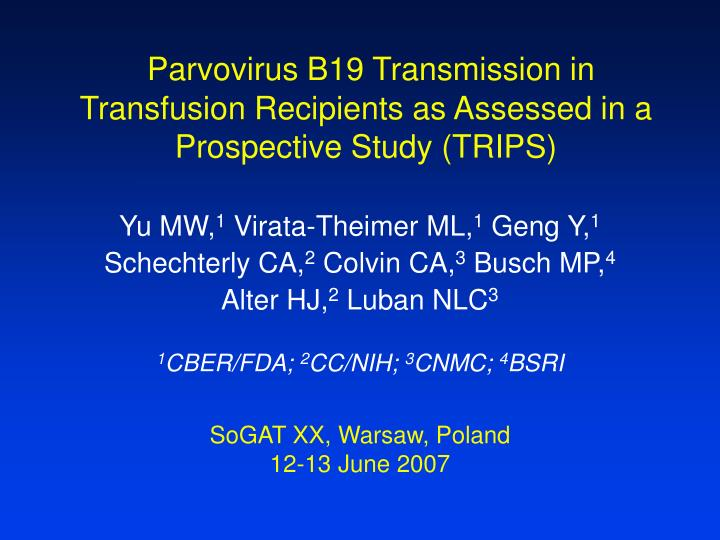 parvovirus b19 transmission in transfusion recipients as assessed in a prospective study trips n.