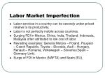 labor market imperfection