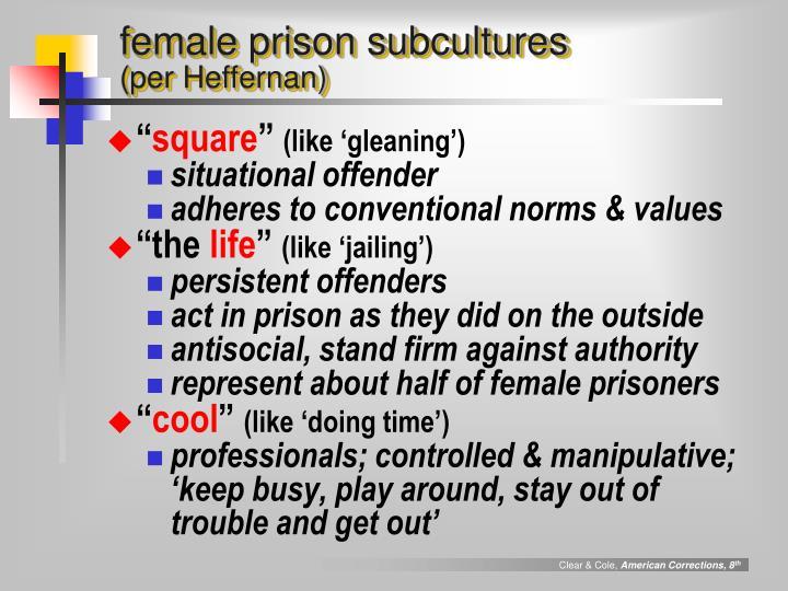 female prison subcultures