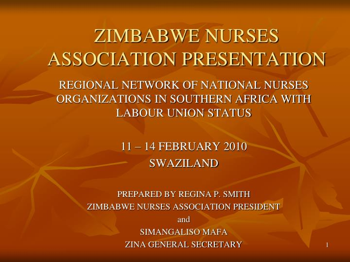 zimbabwe nurses association presentation n.