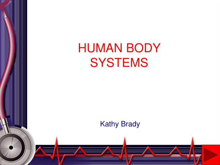 human body systems n.