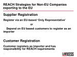 reach strategies for non eu companies exporting to the eu