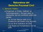 naturaleza del derecho procesal civil