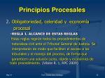 principios procesales1