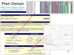pfam domain