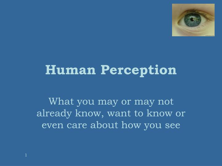 human perception n.