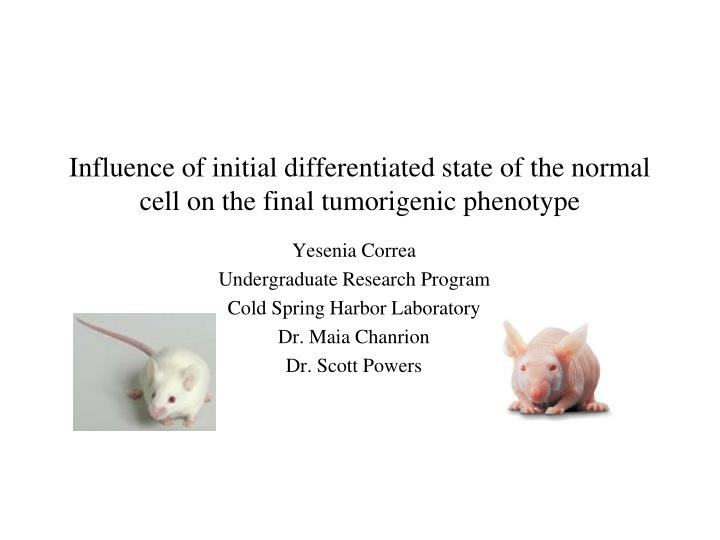 influence of initial differentiated state of the normal cell on the final tumorigenic phenotype n.