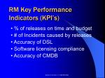 rm key performance indicators kpi s
