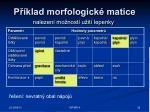 p klad morfologick matice