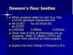 dawson s flour beetles4