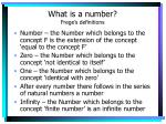 what is a number frege s definitions