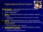 organizational social system