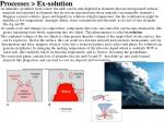 processes ex solution