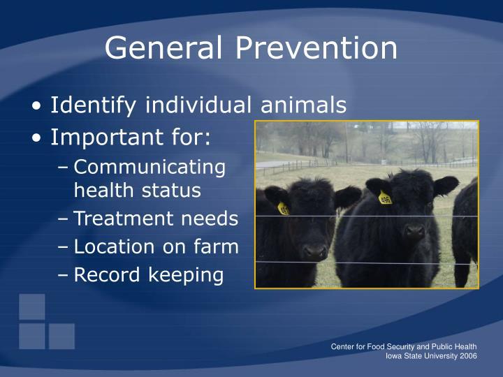 General Prevention