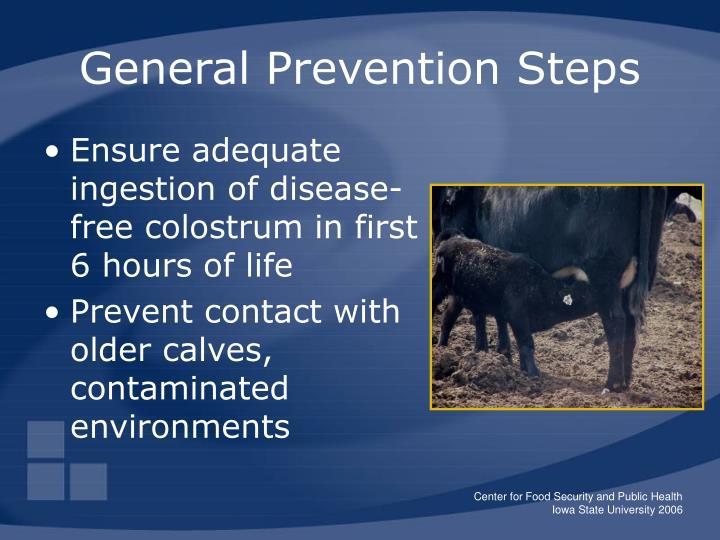 General Prevention Steps