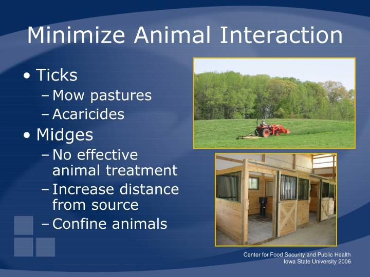 Minimize Animal Interaction