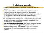 il sistema vocale