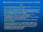 metareality metaconsciousness model 3