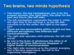 two brains two minds hypothesis