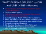 what is being studied by dri and unr nshe handout