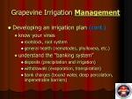 grapevine irrigation management6