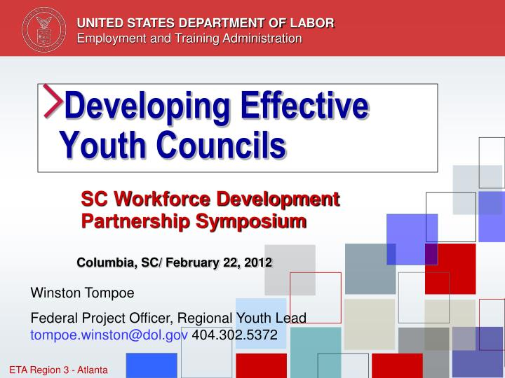 developing effective youth councils n.
