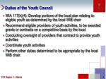 duties of the youth council