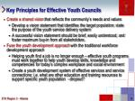 key principles for effective youth councils
