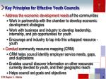 key principles for effective youth councils1