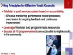 key principles for effective youth councils4