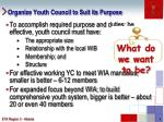 organize youth council to suit its purpose