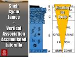 shelf cycle james vertical association accumulated laterally