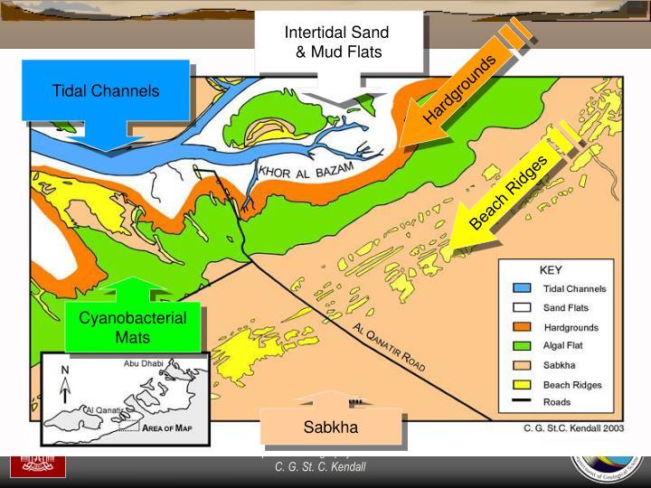 Intertidal Sand