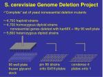 s cerevisiae genome deletion project