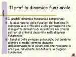 il profilo dinamico funzionale1