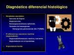 diagn stico diferencial histol gico