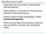 plant responses to light1