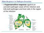 plant responses to pathogen invasions