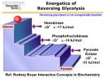 energetics of reversing glycolysis