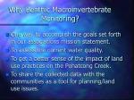 why benthic macroinvertebrate monitoring